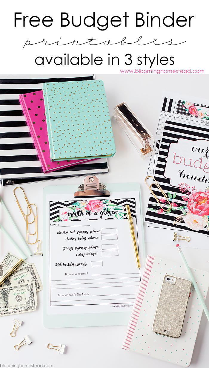 11 Free Budget Printables To Help Get Your Money Under Control - Free Printable Financial Planner 2017