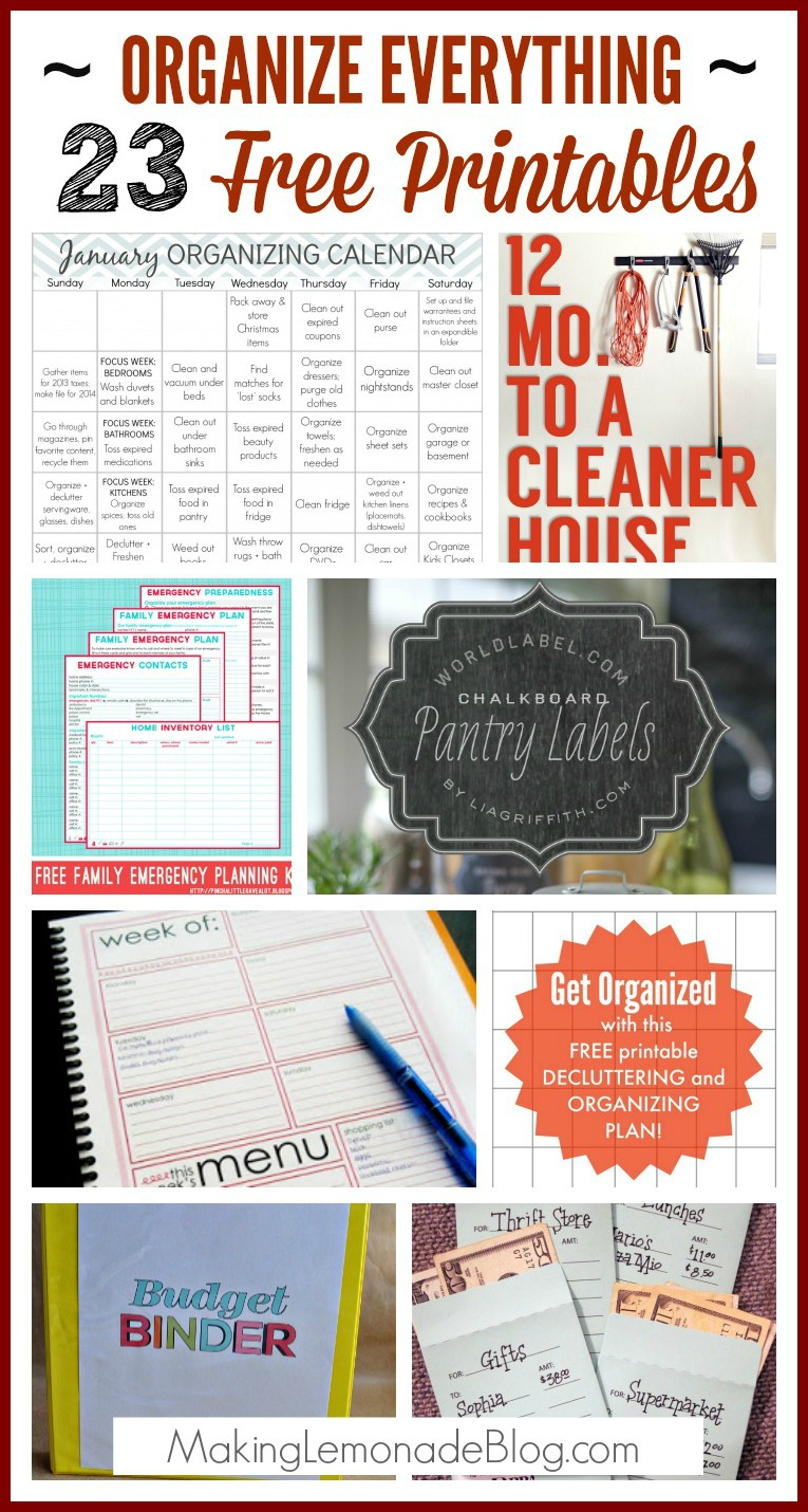 23 Free Printables To Organize Everything - Free Printable Home Organization Worksheets