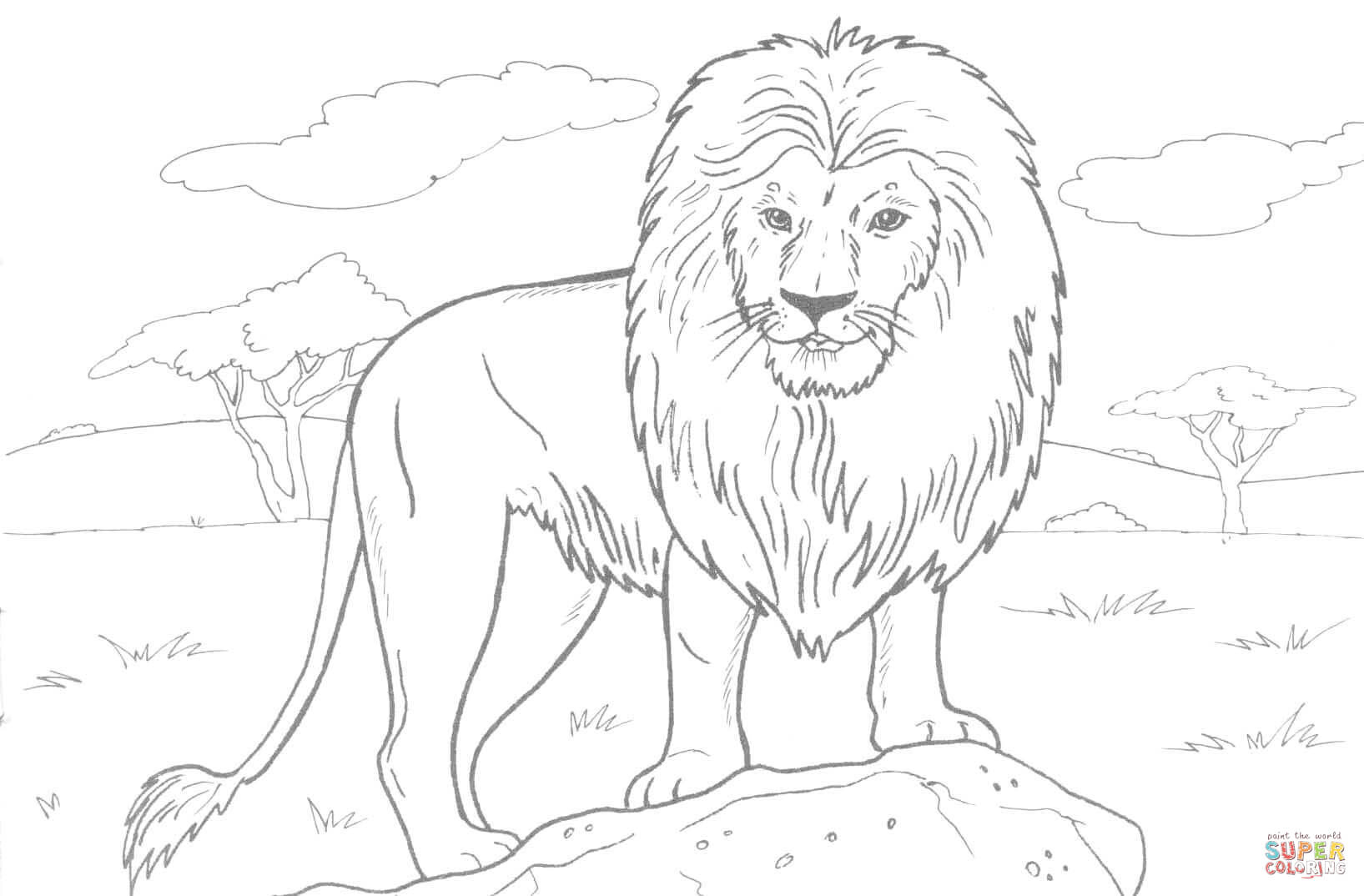 African Lion Coloring Page | Free Printable Coloring Pages - Free Printable Picture Of A Lion