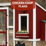 Build A Custom Chicken Coop With Free Printable Plans From Hgtv   Free Printable Chicken Coop Plans