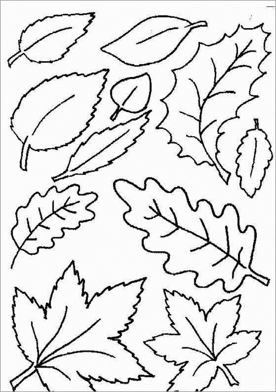 Coloring Pages ~ Autumn Leaves Coloring Pagesee For Kidsautumn - Free Printable Pictures Of Autumn Leaves