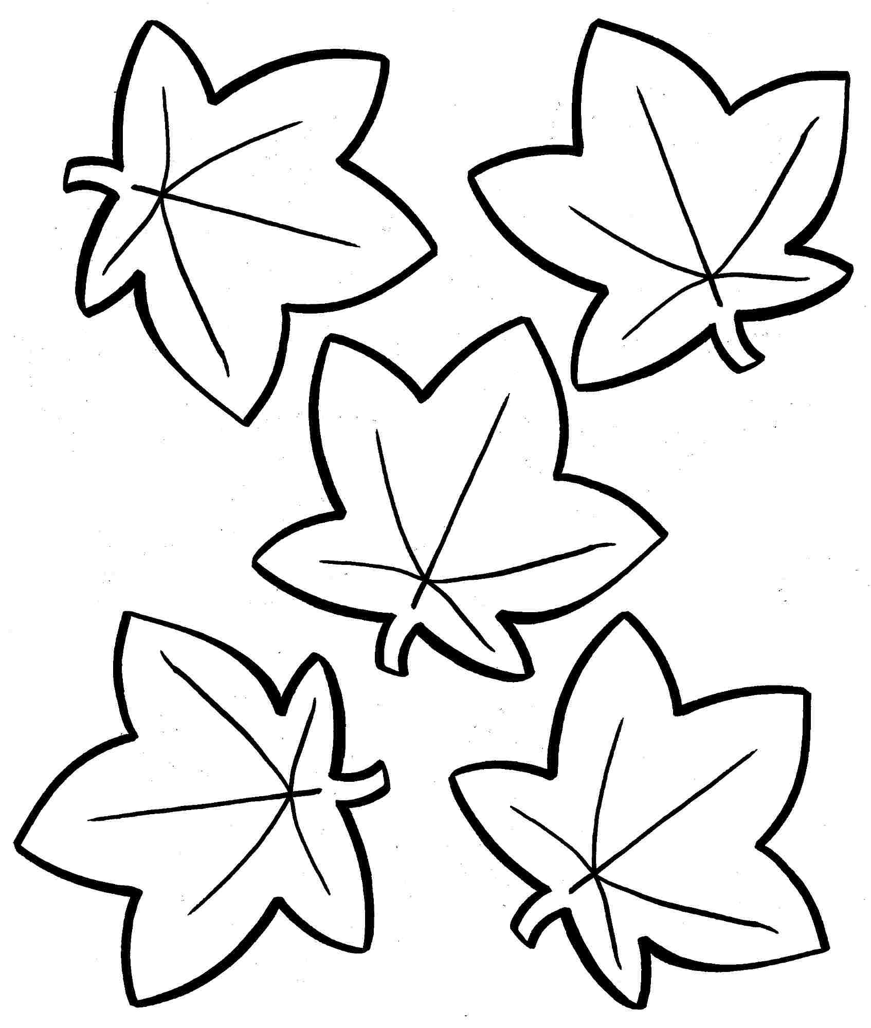 Coloring Pages: Awesome Autumn Leaves Coloring Pages Photo - Free Printable Leaf Coloring Pages