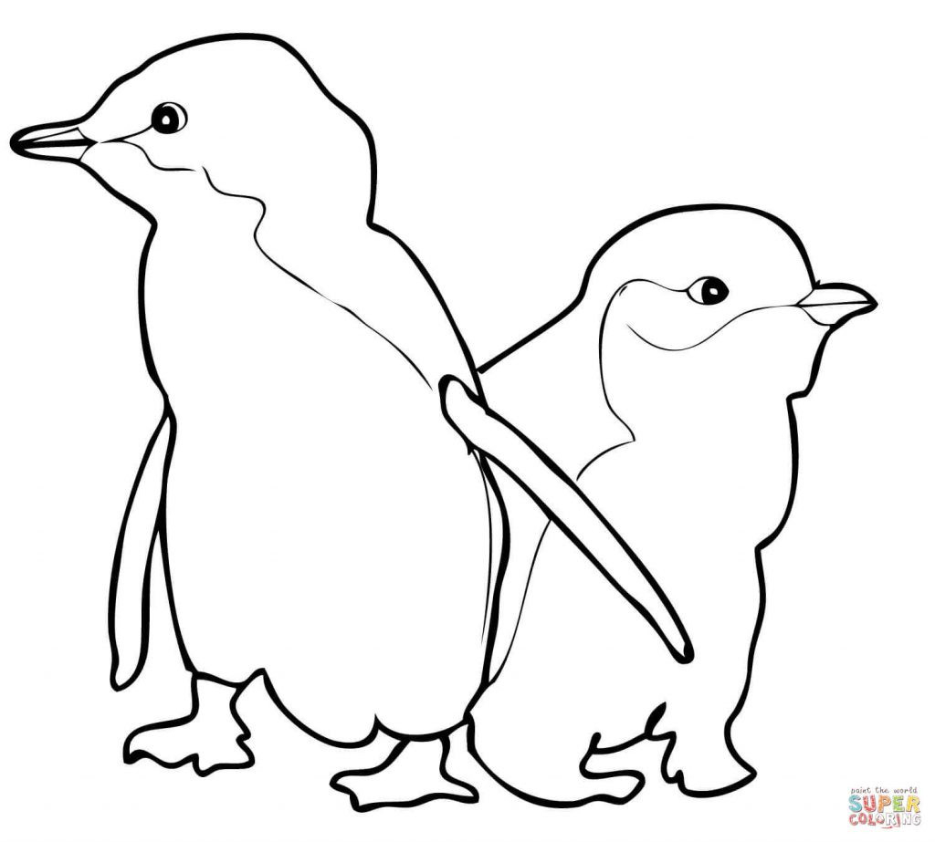 Coloring Pages : Penguin Coloring Sheet Outstanding Sheets For Kids - Free Printable Penguin Books