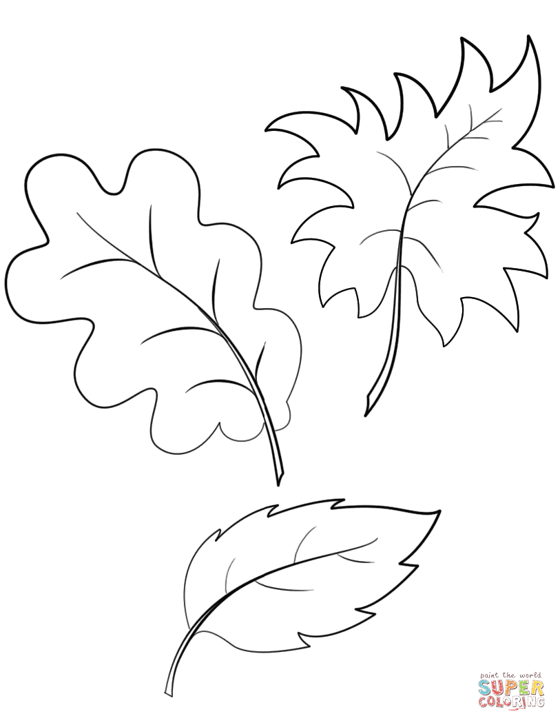 Fall Autumn Leaves Coloring Page | Free Printable Coloring Pages - Free Printable Fall Leaves Coloring Pages