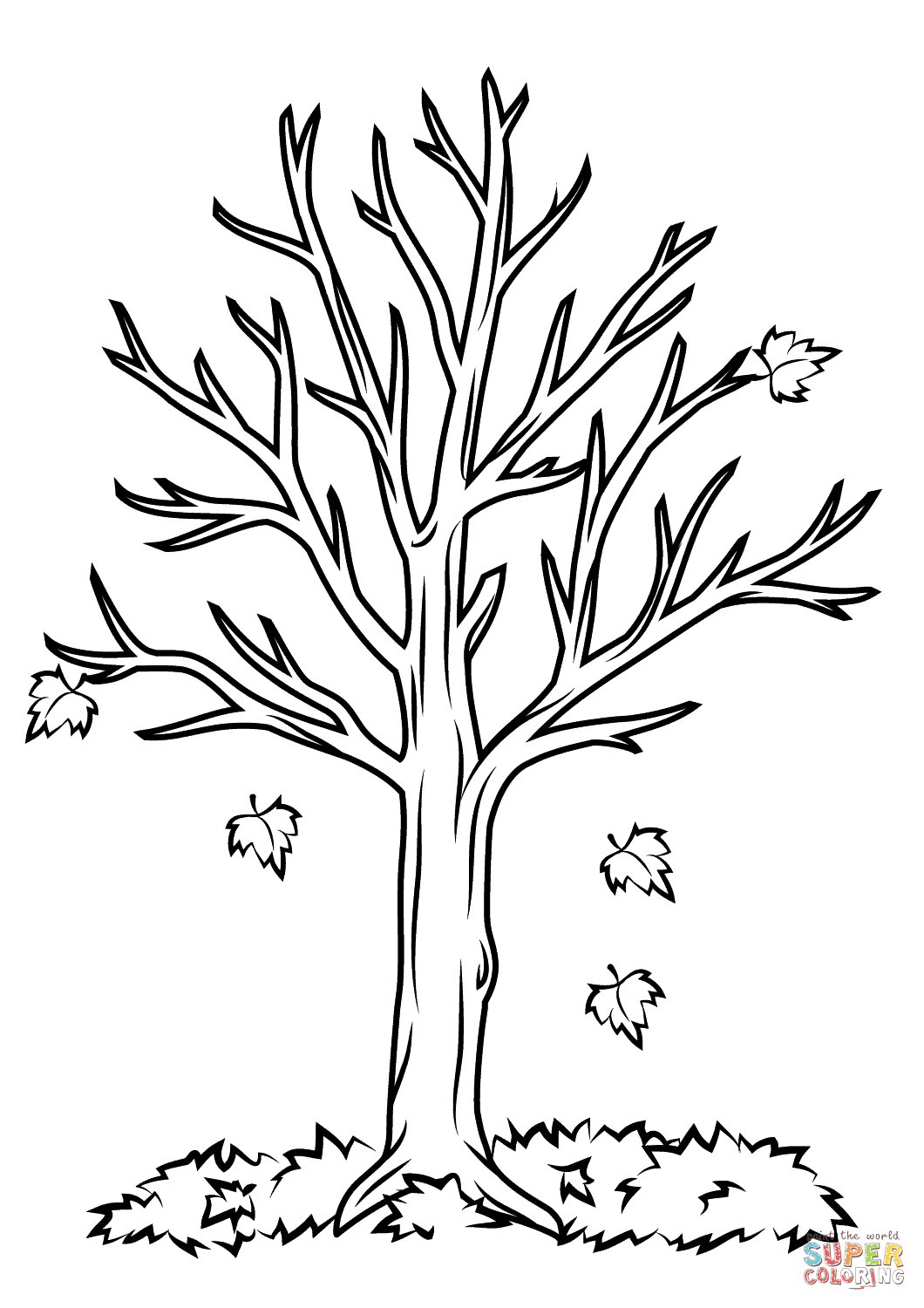 Fall Tree Coloring Page | Free Printable Coloring Pages - Tree Coloring Pages Free Printable