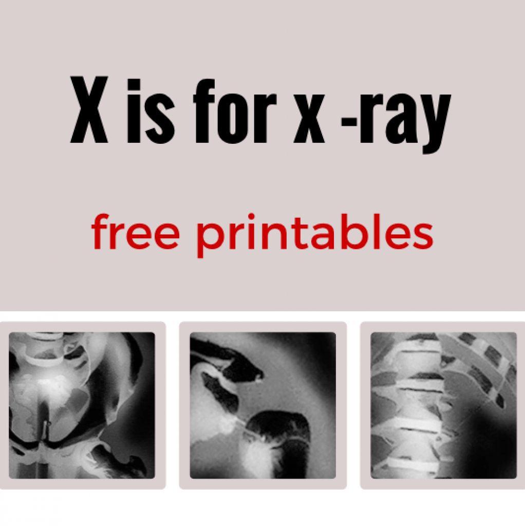 Free Printable Animal X Rays | Free Printable - Free Printable Animal X Rays