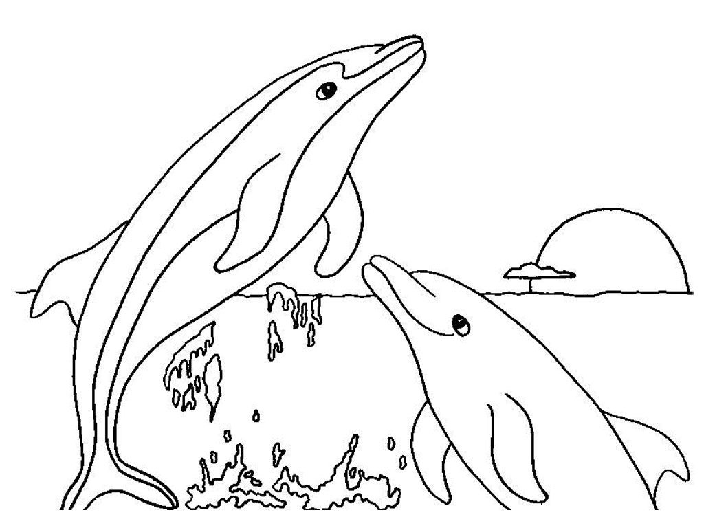 Free Printable Dolphin Coloring Pages For Kids | Coloring Pages - Dolphin Coloring Sheets Free Printable