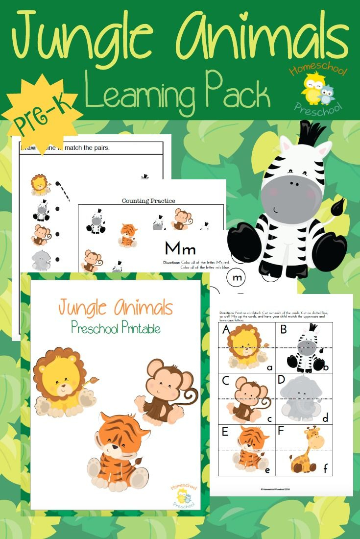 Free Printable Jungle Animals Activities For Preschoolers - Free Printable Early Childhood Activities