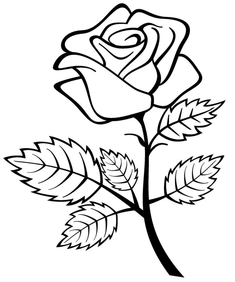 Free Printable Roses Coloring Pages For Kids   1Rosez   Flower - Free Printable Roses