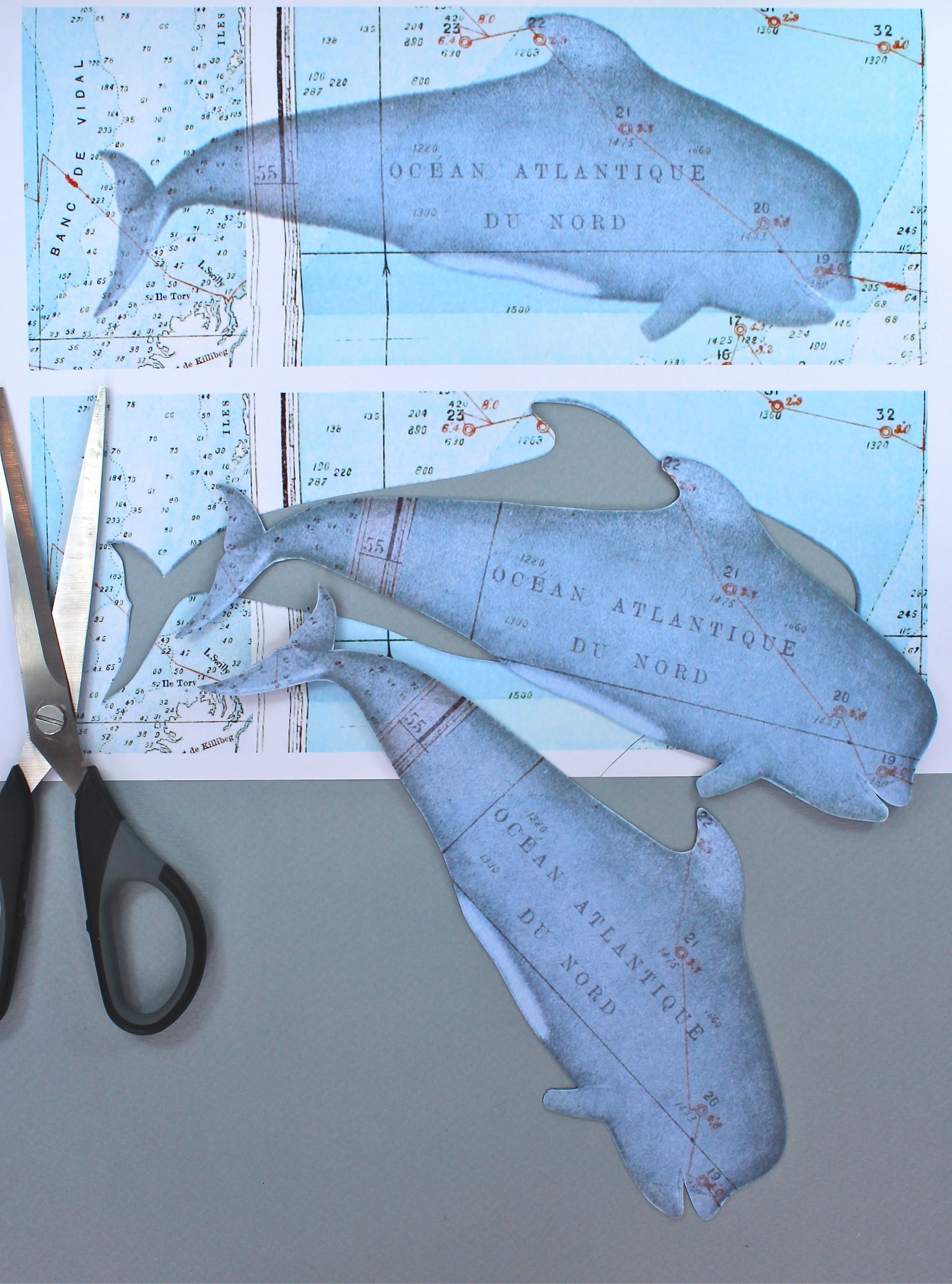 Free Printable Whale Bookmarks Or Gift Tags From Kate's Creative - Free Printable Whale Template