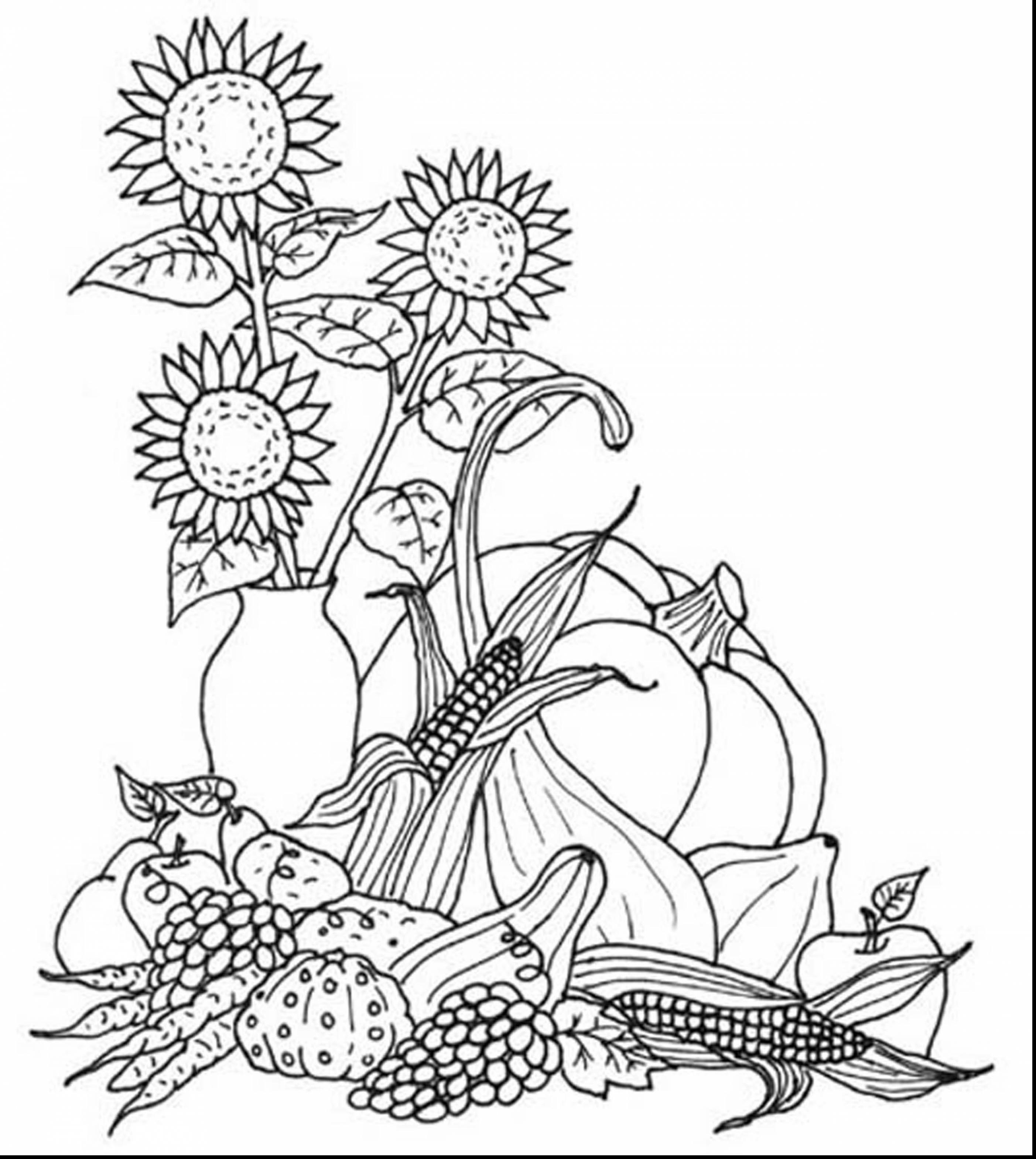 Harvest Coloring Pages Printables - Free Printable Fall Harvest Coloring Pages