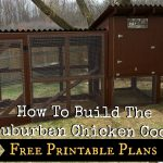 How To Build The Simple Suburban Chicken Coop   Free Printable Plans   Free Printable Chicken Coop Plans