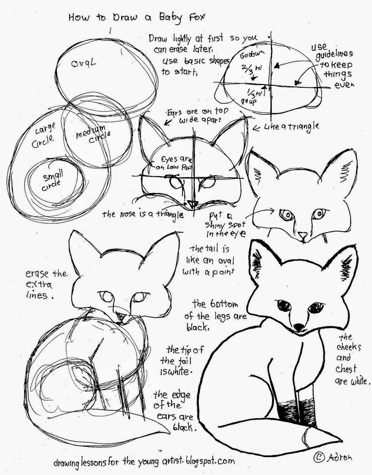 How To Draw Worksheets For The Young Artist: How To Draw A Baby Fox - Free Printable Drawing Worksheets