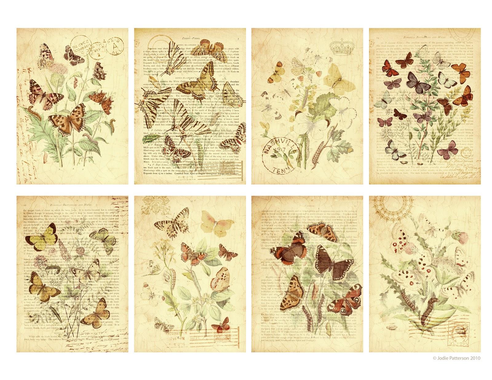 Jodie Lee Designs: Free Printable: Butterfly Garden Gift Tags! - Free Printable Butterfly