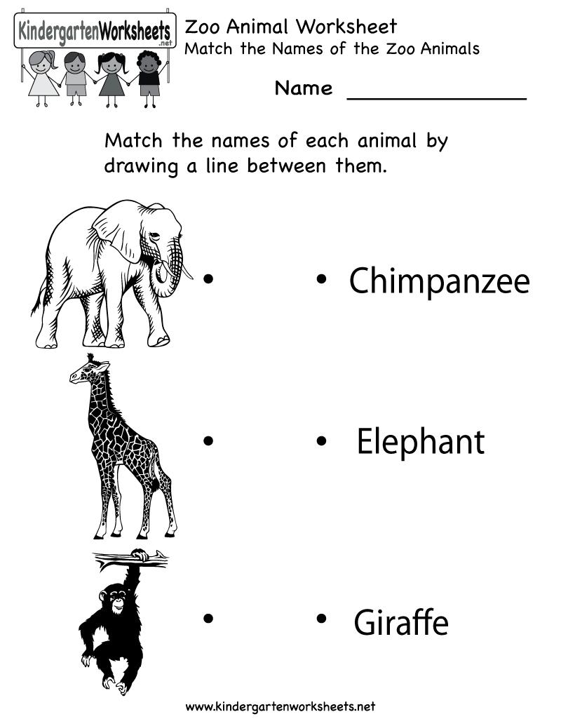 Kindergarten Zoo Animal Worksheet Printable | Worksheets (Legacy - Free Printable Zoo Worksheets