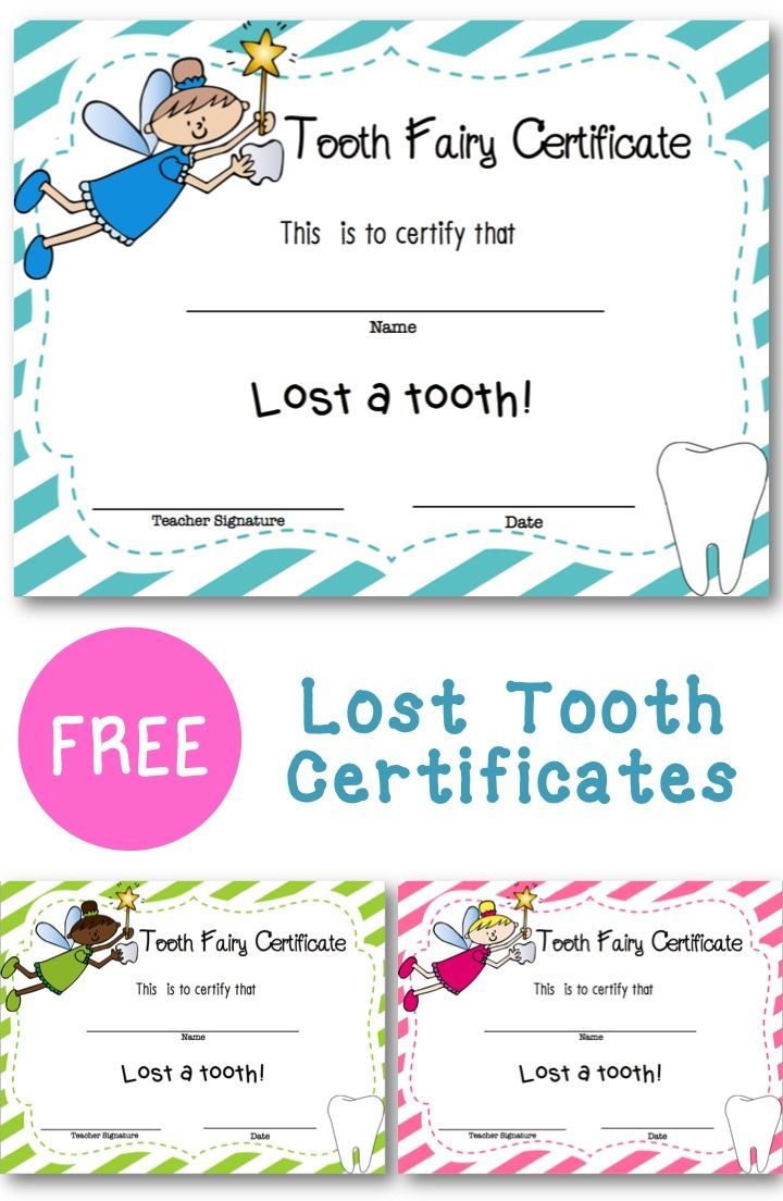 Lost Tooth Certificate | New England Teacher | Teaching First Grade - Free Printable Swimming Certificates For Kids