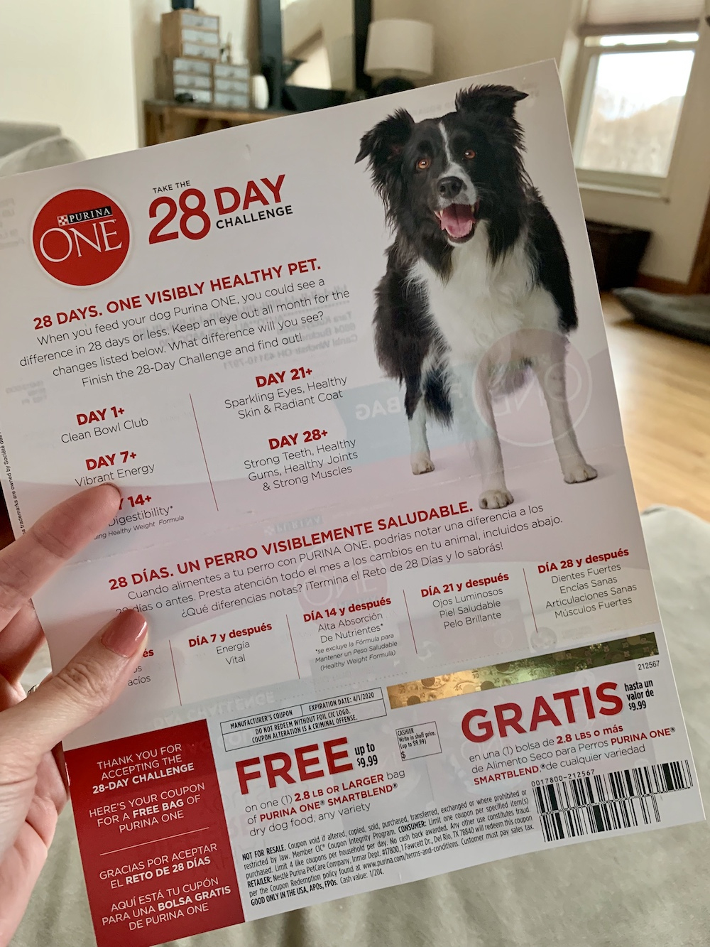 My Free Bag Of Purina One Dog Food Coupon Came Today! - Deal Seeking Mom - Free Printable Coupons For Purina One Dog Food