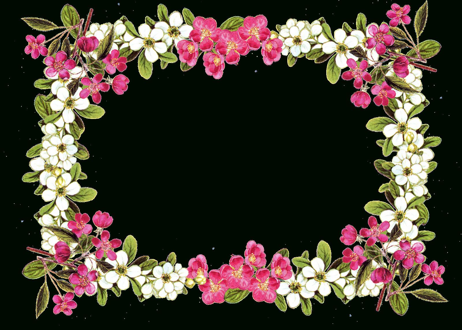 Pin Von Adele Gilmore Auf Wow | Pinterest | Blumenrahmen, Blumen Und - Free Printable Clip Art Flowers