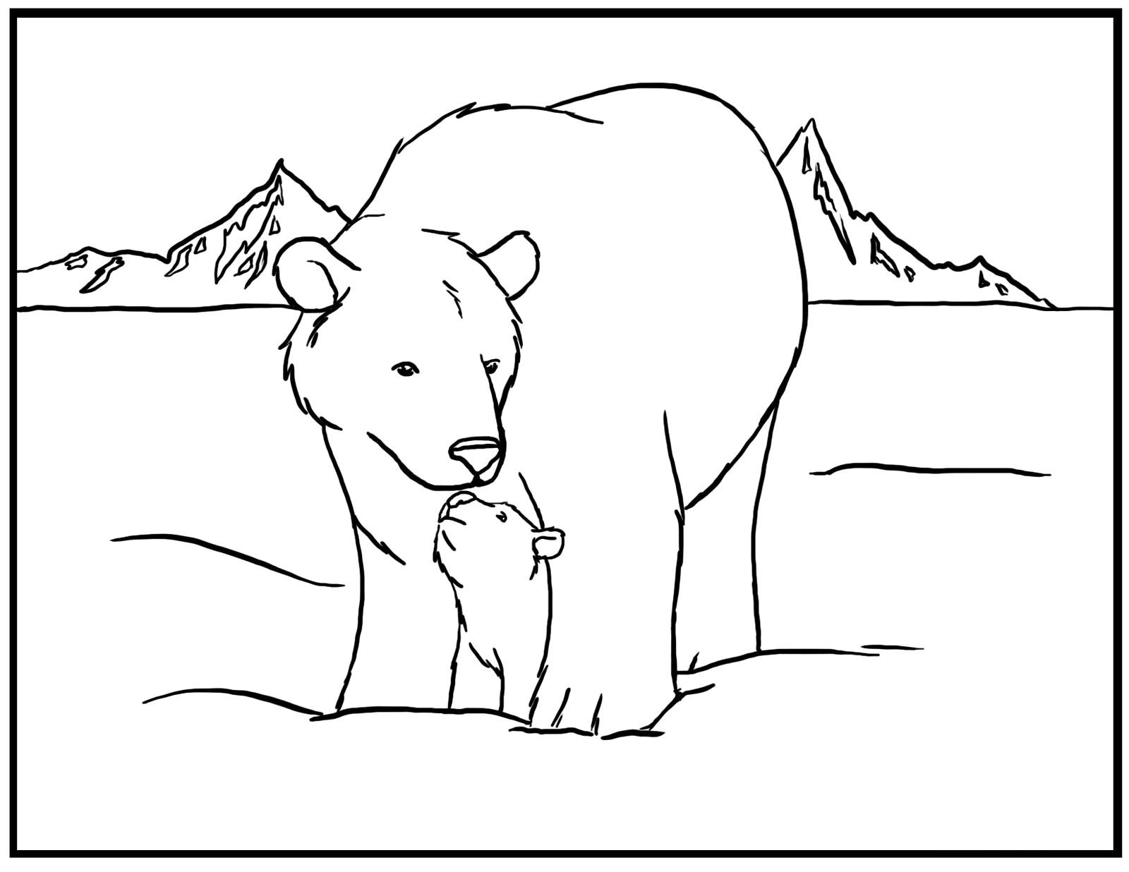 Polar Bear Coloring Pages Free   Diywordpress - Polar Bear Printable Pictures Free