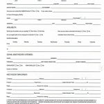 Printable Job Application Forms Online Forms, Download And Print   Application For Employment Form Free Printable