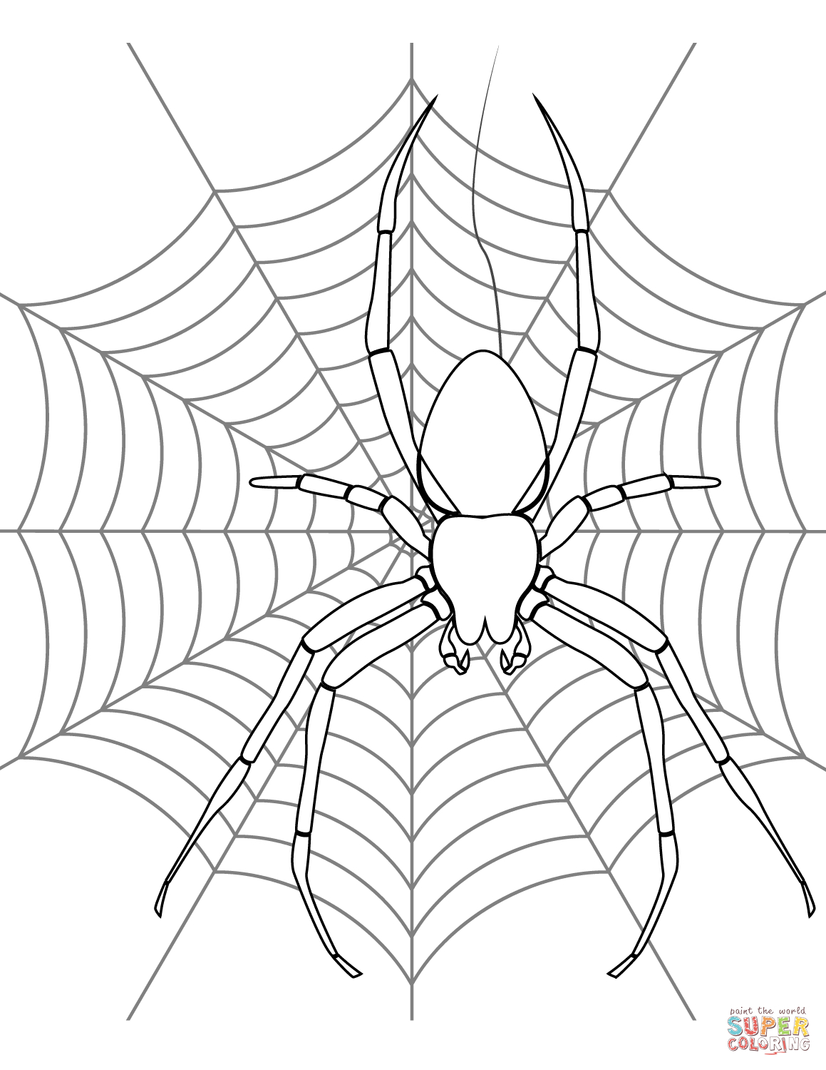 Spider On Its Web Coloring Page | Free Printable Coloring Pages - Free Printable Spider Web