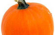 Printable Nfl Pumpkin Carving Patterns Free