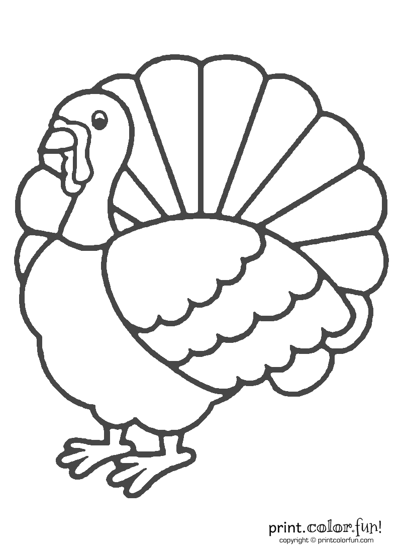 Thanksgiving Turkey Coloring   Print. Color. Fun! Free Printables - Free Printable Pictures Of Turkeys To Color