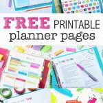 These Free Printable Planner Pages Are The Cutest! Fabulous   Free Printable Organizer 2017