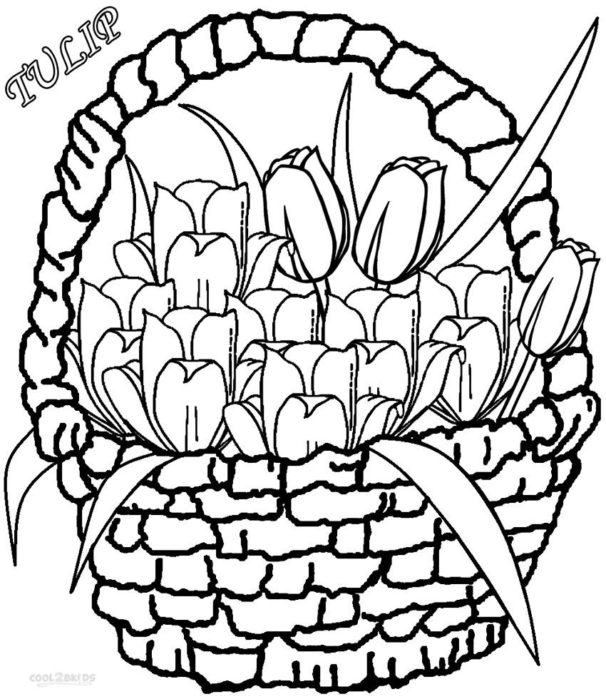 Tulip Coloring Pages Free Printable 850×980 Attachment - Lezincnyc - Free Printable Tulip Coloring Pages