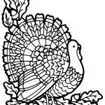 Turkey Coloring Page | A To Z Teacher Stuff Printable Pages And – Free Printable Pictures Of Turkeys To Color