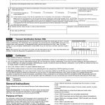 W 9 Form 2019 Printable   Irs W 9 Tax Blank In Pdf   Free Printable W9