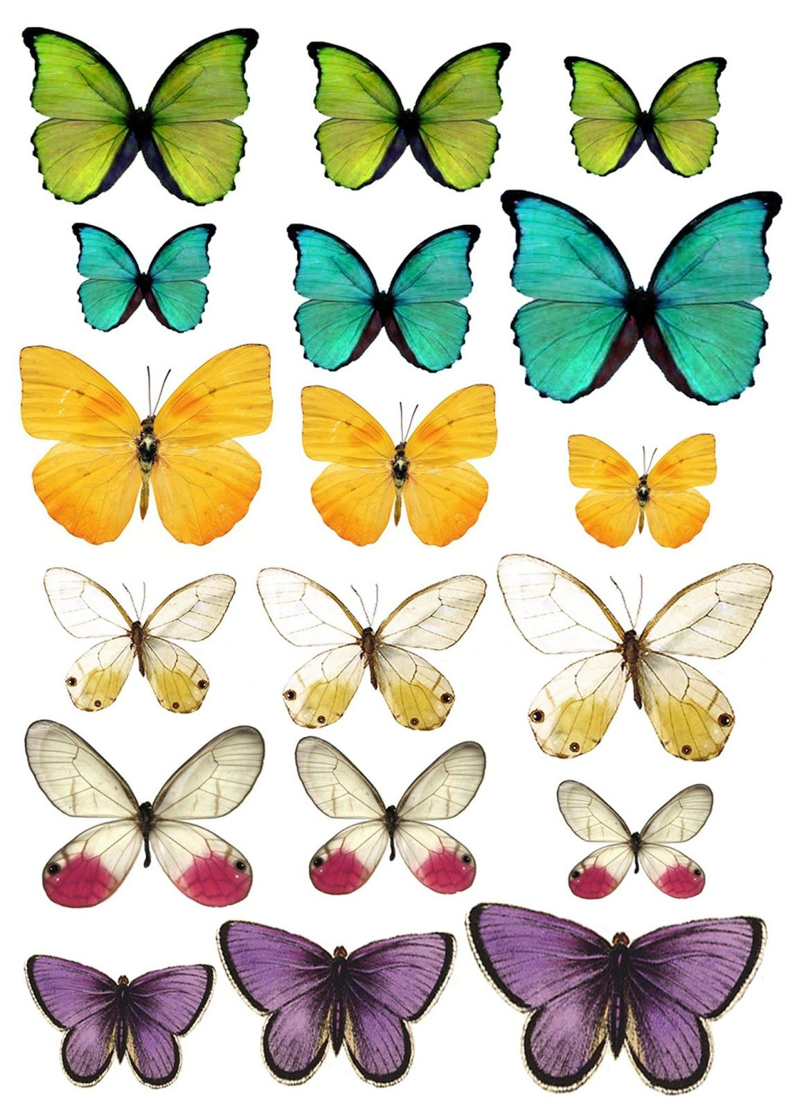 What A Beautiful Mess: Free Butterfly Printable   Printables - Free Printable Butterfly Pictures